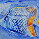 """Reef Fish 2"" by DavidBleakley"