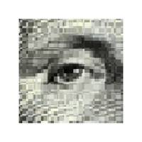 Washington_eye pixelated