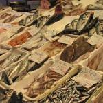 """Fishy Outdoor Market - Rome"" by debbsview"