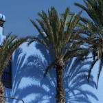 """""""Gran Canaria 2006 070"""" by jungleboy"""