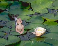 Lily Pond Garden Baby Mermaid xlg