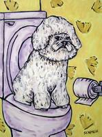 Bichon Frise in the Bathroom