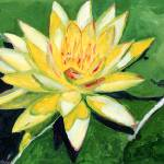 """Yellow Waterlily by RD Riccoboni ™"" by BeaconArtWorksCorporation"
