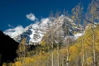 Maroon Bells through the Aspen Boles