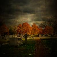 Cemetery in Autumn Art Prints & Posters by Lauren Chapman