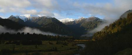 Between Fox and Franz Josef
