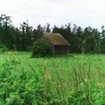 """""""Whidbey Island Barn"""" by MaureenReilly"""