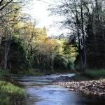 """Union River"" by RichardBaumer"