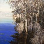 """St. Johns River Cypress"" by elenamaza"