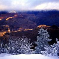 grand canyon snowy rim
