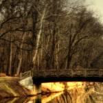"""""""A bridge in a park"""" by JohnEmmaneel"""