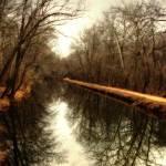 """A walk in the park"" by JohnEmmaneel"