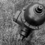"""""""fire hydrant"""" by roselindo"""