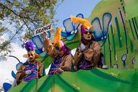 Homesick for the Mardi Gras