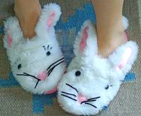 bunny slipper morning