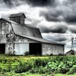 """Farm"" by K2D2vaca"