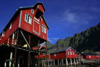 Red robuer in the town of A, Lofoten, Norway