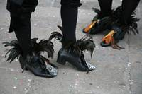 Pheasant Shoes