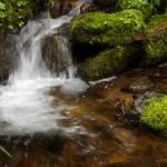 """Waterfall #22"" by jromadka"