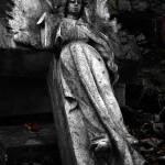 """fallen angel"" by adamvarga"