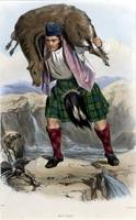 MacRae : Scottish Highland Clan (McIan)