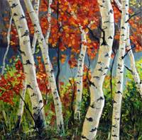 Birch and Maple Trees