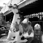 """Ilsan Ponyride"" by WBFullerARTS"