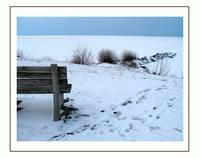 A lonely bench at Lake Erie