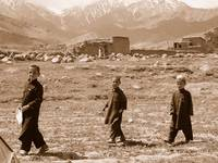 Three Boys and the Hindu Kush, Afghanistan