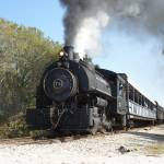 """Florida Steam Train"" by Darrin"