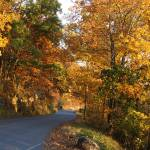 """Fall at Kennesaw Mountain, GA"" by Darrin"