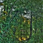 """River Walk"" by anntopia"