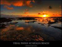 Tidal Pool at Kealia Beach