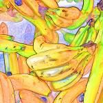 """bananas"" by studiobrian"