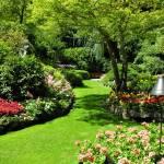 """Snapshot @ Butchart Garden, Victoria Island, Canad"" by nikumaru"