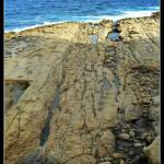 """Rocky beach"" by maistora"