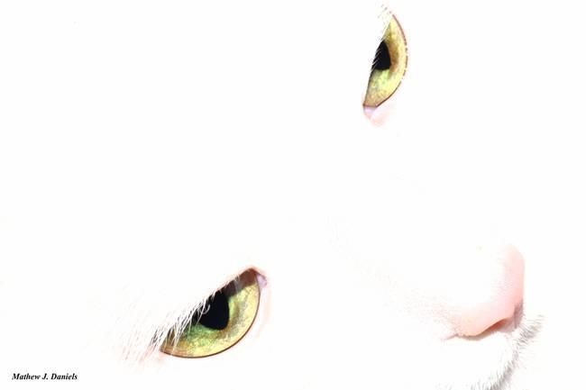 those bedroom eyes by mathewjdaniels