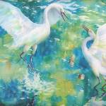 """Dance of the Egrets"" by dyounglao"