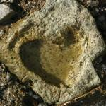 """Heart Of Stone"" by Andrew-Goldsmith"