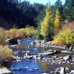 """""""The Big Thompson River of Colorado"""" by pbk"""