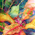 """Colorful Croton"" by dyounglao"