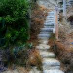 """Stairway Foliage"" by BGPhoto"