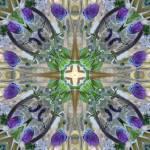 """purpleflower6"" by dhill"