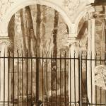 """Versailles Gates"" by FluidColor"