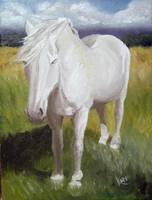 Old White Mare