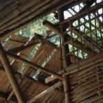 """""""Bambouseraie structure thailandaise"""" by VinceFarmer"""