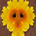 """""""Sunny Face"""" by LunarImage"""