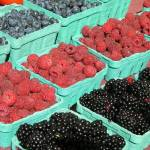 """mixed berries for sale at the market"" by photographsaroundtheworld"