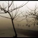 """winter morning-6"" by creative-photos"