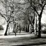 """Beford Embankment"" by RichardPeace"